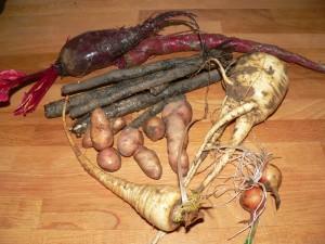 Kleine Gemüsekunde