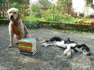 Hundis und bücher