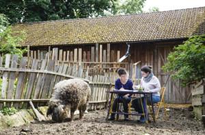 Schreibtisch im Schweinsstall